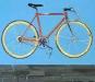 Alina's Bike.jpg