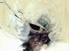 CAVEDouglasMiller_Pixies