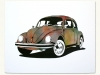 manual_designs_beetle_color