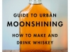 5Guide-to-Urban-Moonshining