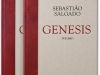 cover_su_salgado_genesis_both_covers_1304121127_id_633871