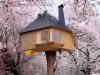 taschen_tree_houses_1