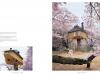 taschen_tree_houses_8