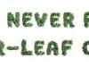 clover-type2