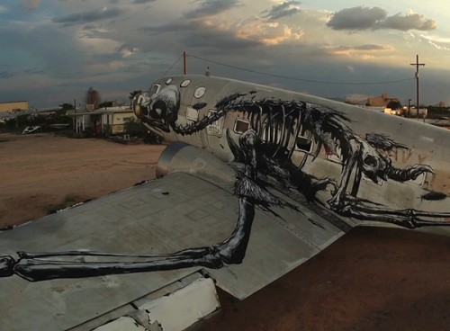 ROA-Boneyard-Project