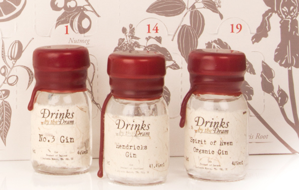 gin-advent